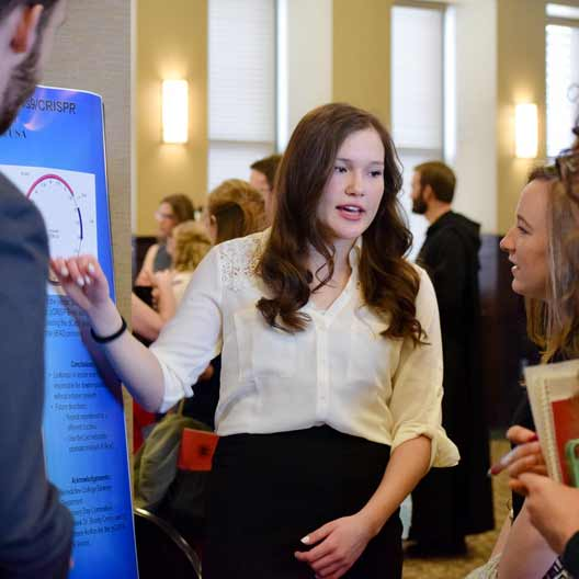 A student explains a poster presentation at Discovery Day