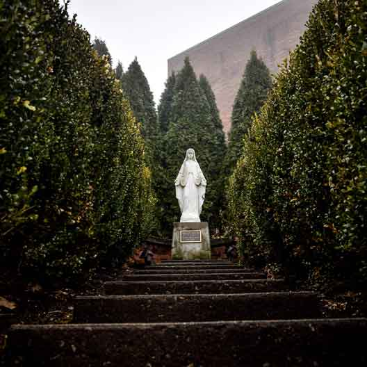 A statue of the Blessed Mother, surrounded by small trees
