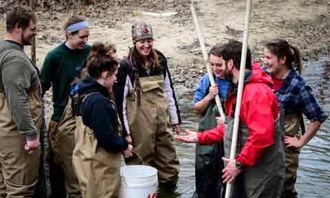 Students examining fish in a creek with Dr. Terrence Malloy in Biology class